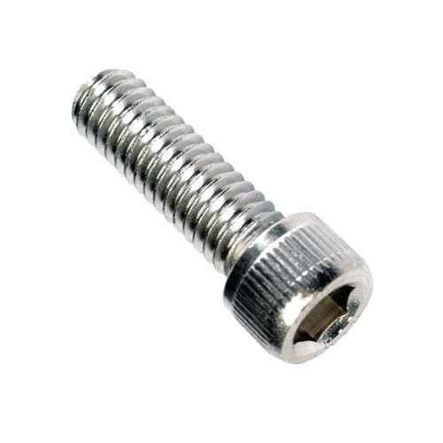 Champion 1/4in x 1/2in BSW Socket Cap Screw 316/A4 -10pk