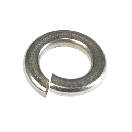 Champion 1/4in Stainless Spring Washer 304/A2 -50pk