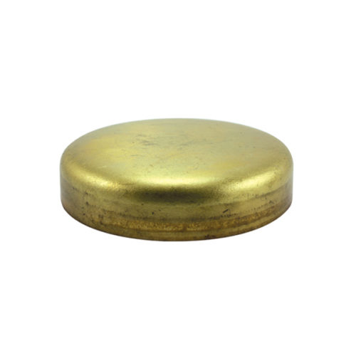 Champion 50mm Brass Expansion (Frost) Plug -Cup Type -2pk