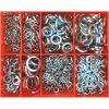 Champion 895pc Square Section Spring Washer Assortment