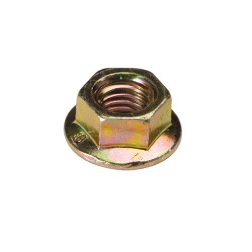 Champion M6 x 1.00 Nut (10mm AF) -95pk