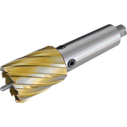 Extension Arbor 25mm To Suit 8mm Pilot Pin